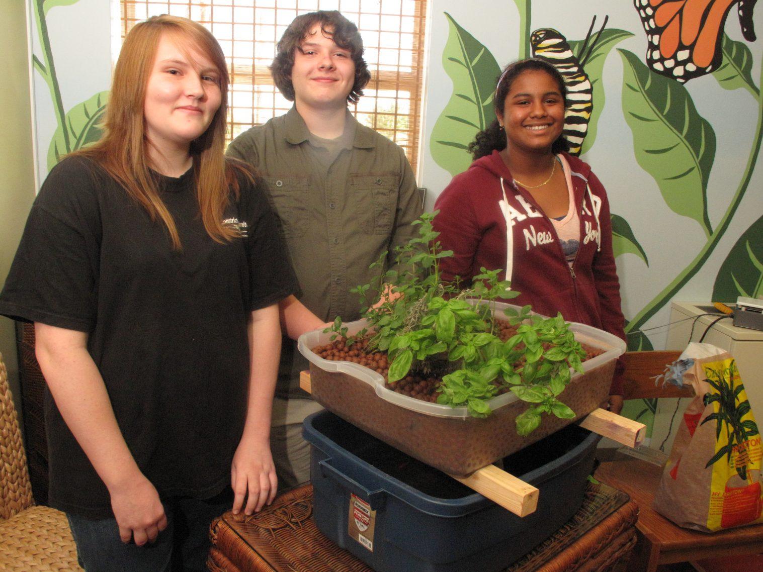 EcoRise Student Projects - Aquaponics