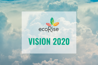EcoRise-Vision-2020-Blog-Cover