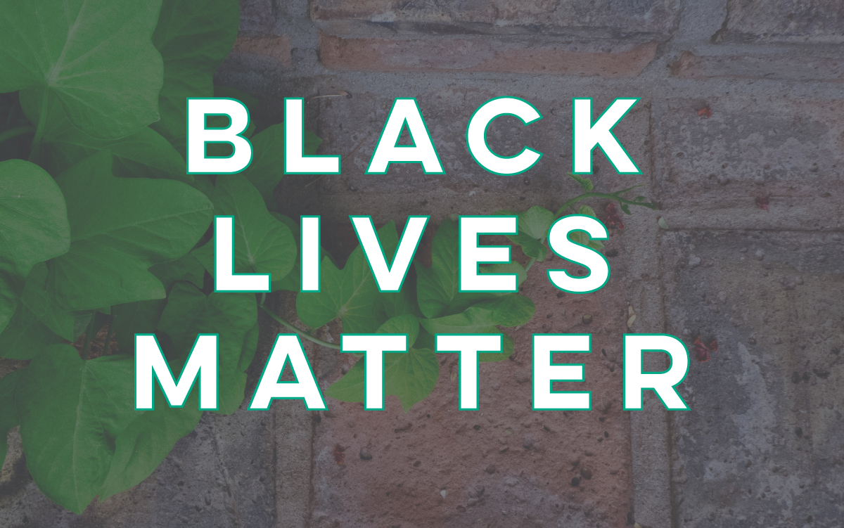 Text reads Black Lives Matter overlaid on a green leafy vine growing on a brick wall.
